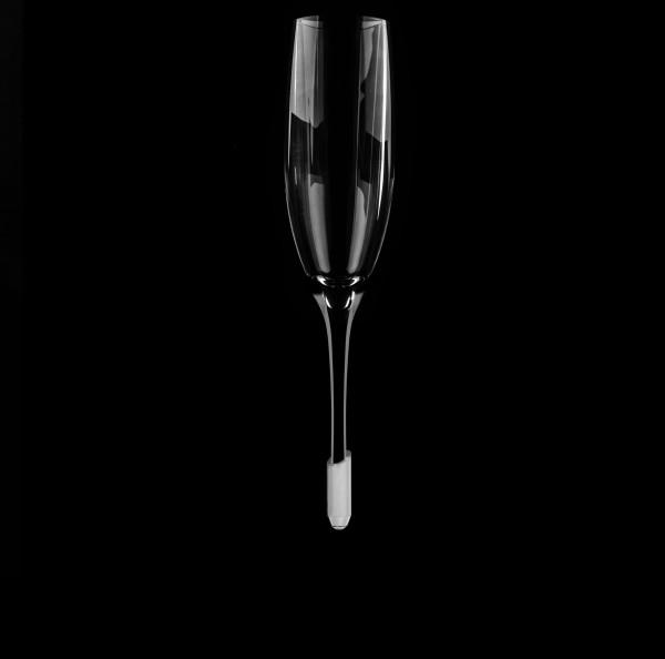 Premium POLYCARBONAT Champagner